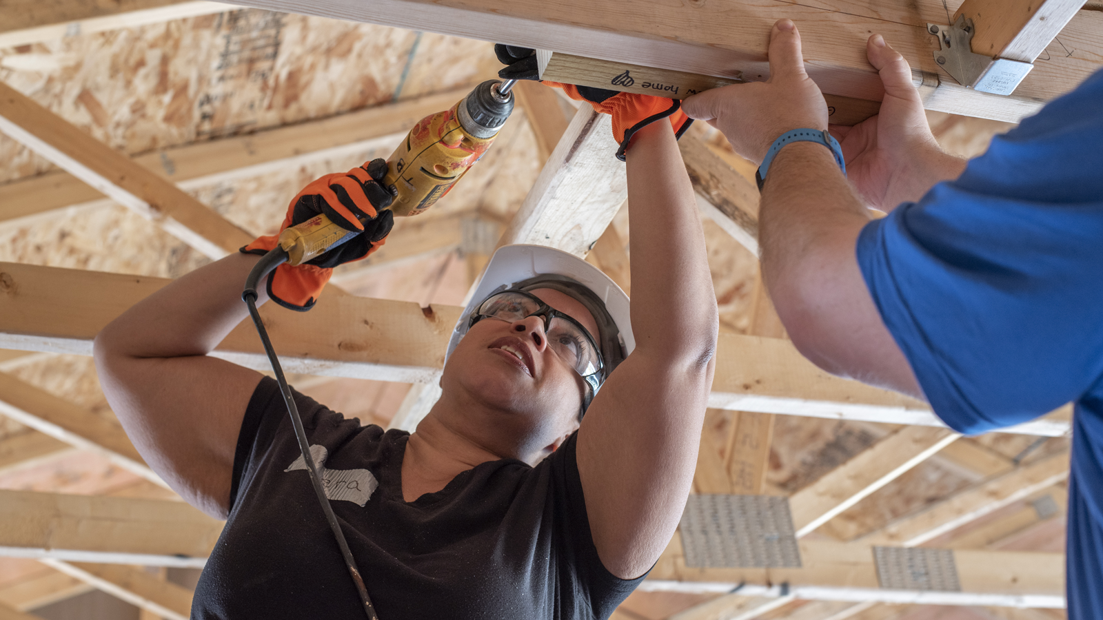 Give Back and Volunteer with Habitat
